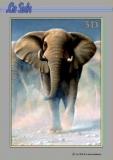 3D-Buch A4 Tiere von LeSuh (320011)