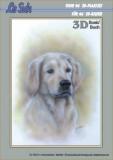 3D-Buch A4  Tierevon LeSuh (320004)