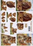 3D-Bogen Tiger und Löwe von LeSuh (416944)
