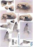 3D-Bogen Polarbären von LeSuh (4169595)