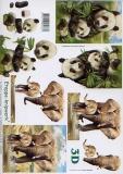 3D-Bogen Panda und Elefant von LeSuh (416964)