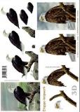 3D-Bogen Adler von LeSuh (416932)