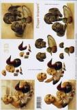 3D-Bogen Hündchen von LeSuh (416926)