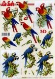 3D-Bogen Papageien von LeSuh (4169802)