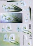 3D-Bogen Set Weiße Blumen 1  (SET-019)