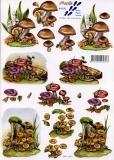3D-Bogen Pilze von Nouvelle (821573)