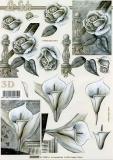3D-Bogen Kondolenz von LeSuh (4169697)