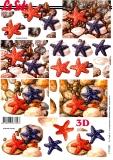3D-Bogen Seesterne von LeSuh (777.528)