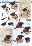 3D-Bogen Schulabschluss von LeSuh (777.184)