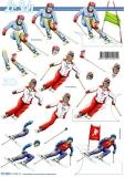 3D-Bogen Skifahrer von LeSuh (777.492)