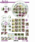 3D-Bogen Squares Haus von LeSuh (630.224)