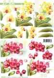 3D-Bogen Orchidee von Nouvelle (8215776)