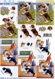 3D-Bogen Hunde & Katzen von LeSuh (777.433)