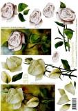 3D-Bogen Weiße Rose von LeSuh (4169160)