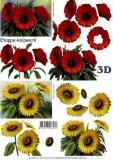3D-Bogen Mohn und Sonnenblumen von LeSuh (4169643)