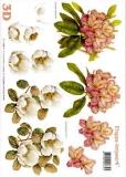 3D-Bogen Rhododendron von LeSuh (416945)