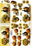 3D-Bogen Kürbisse und Sonnenblumen von LeSuh (4169634)